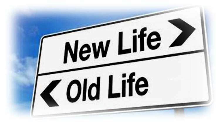 Employment & Opportunities Webinars Wisdom Of Age